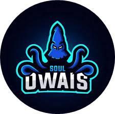 soul owais logo