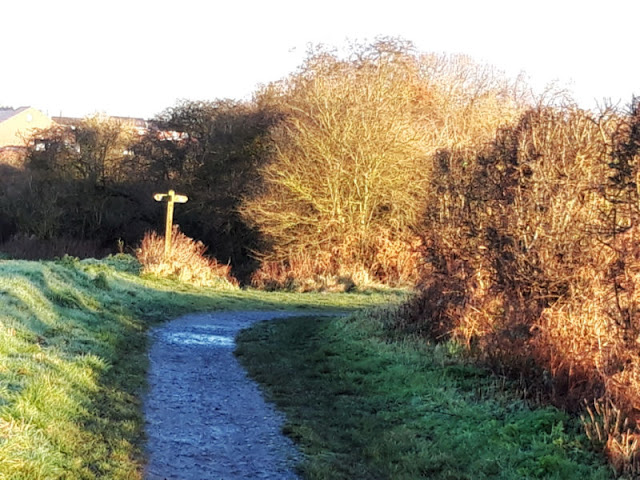 A muddy footpath heads towards a signpost.  The sun is shining on the trees and the leaves look golden