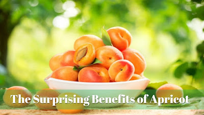 The Surprising Benefits of Apricot, govtproinfo