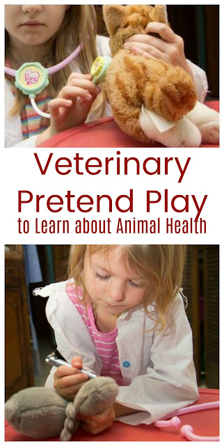 Learn about Animal Health with the Community Helper for V