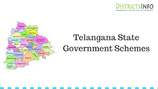 Telangana State Government Schemes
