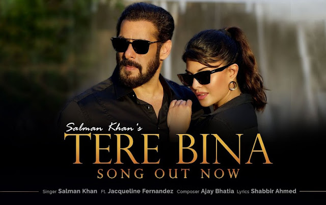 Tere Bina lyrics Salman Khan