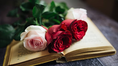 Books and flowers wallpaper