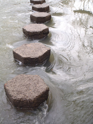 Photograph 1. stepping stones