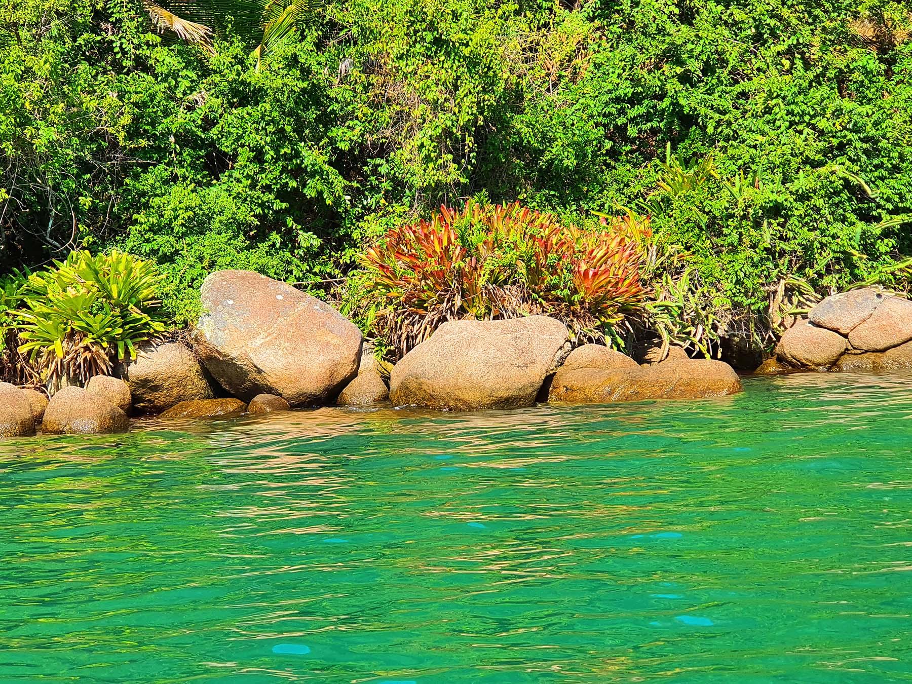 Saco do Mamanguá, Paraty: dicas de passeio de barco.