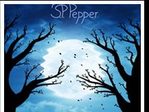 [REZENSION] MAGIE VOLLER TÜCKEN VON S. P. PEPPER