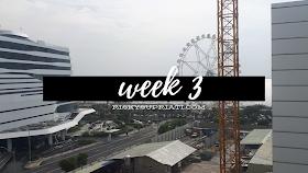 Week 3: Challenging