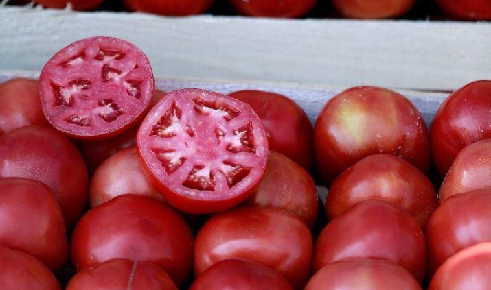 El tomate es fruta o verdura