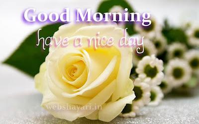 good morning roses pic