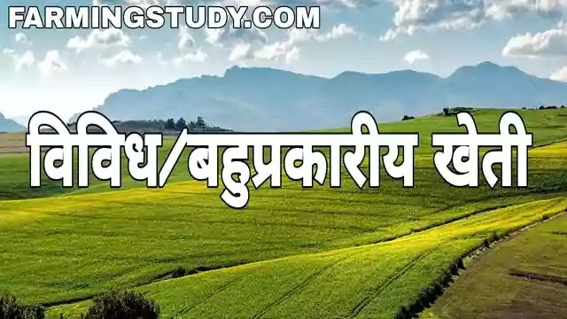 विविध/बहुप्रकारीय खेती किसे कहते हैै, diversified farming in hindi, general farming in hindi, विविध/बहुप्रकारीय के लाभ, विविध/बहुप्रकारीय की हानियां