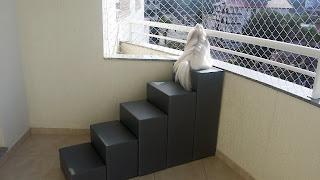 escadas para cães observar sacadas e janelas