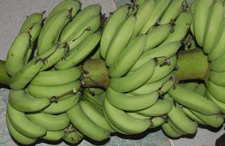 Image result for pisang kapas malaysia