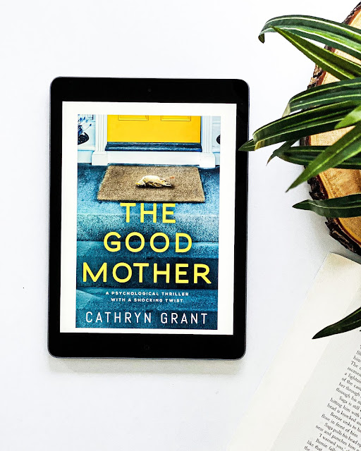 The Good Mother - Book Review - Incredible Opinions