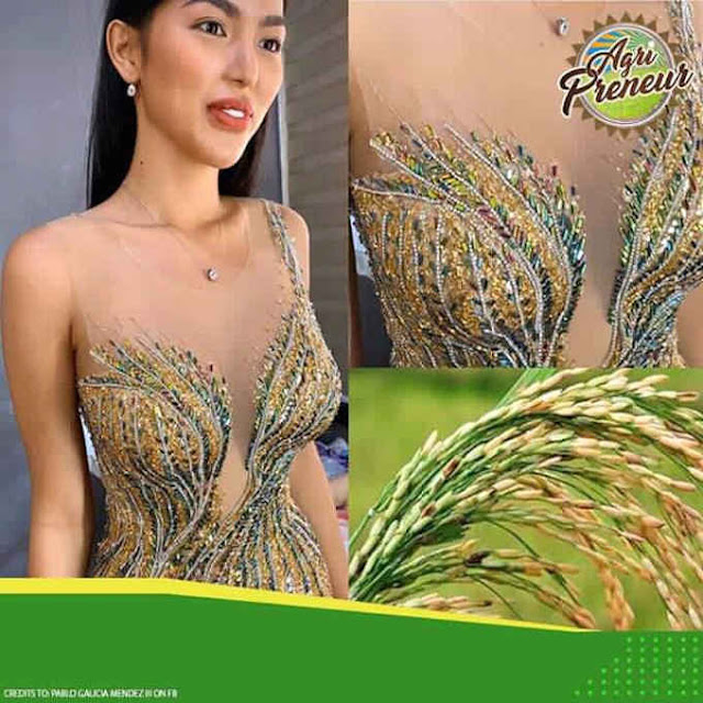 palay gown