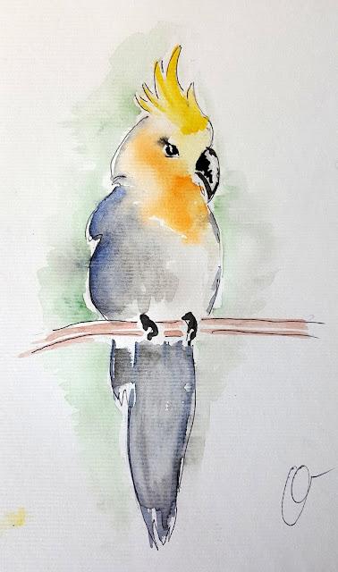 рисунок, акварель. попугай