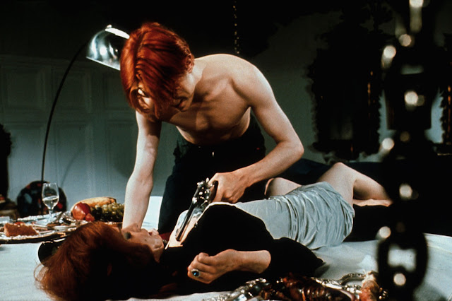 The Man Who Fell To Earth David Bowie & Candy Clark