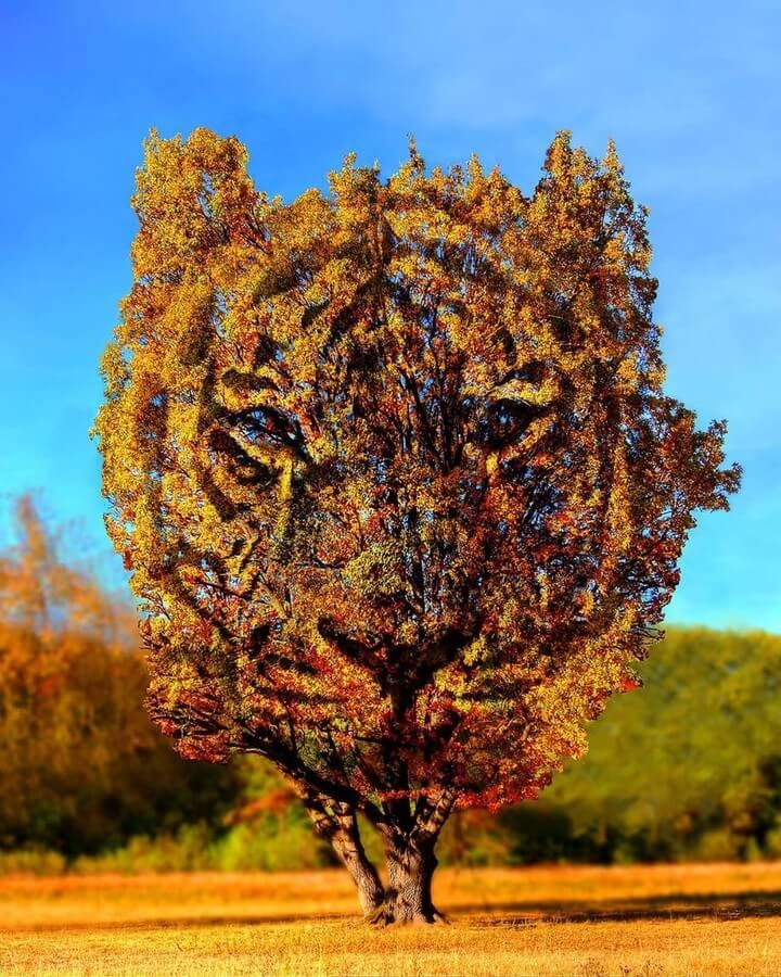02-Tiger-Tree-Digital-Art-Martijn-Schrijver-www-designstack-co