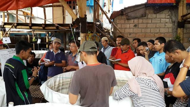 Membuat Tambak Udang dan Ikan di Perkotaan