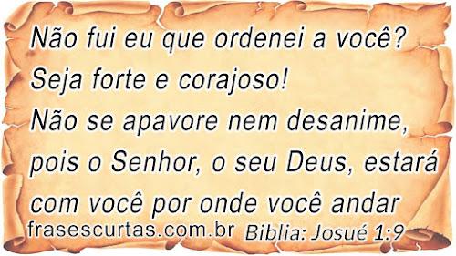 Não se apavore nem desanime, pois o Senhor, o seu Deus, estará com você por onde você andar - Biblia Sagrada