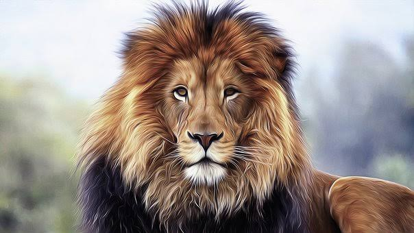 Interesting facts about lion in tamil
