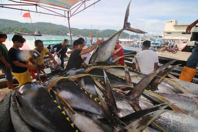 Menteri Trenggono Minta Sertifikat MSC Tuna Dipertahankan