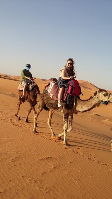 camel trekking sahara desert