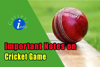 Important Notes on Cricket Game