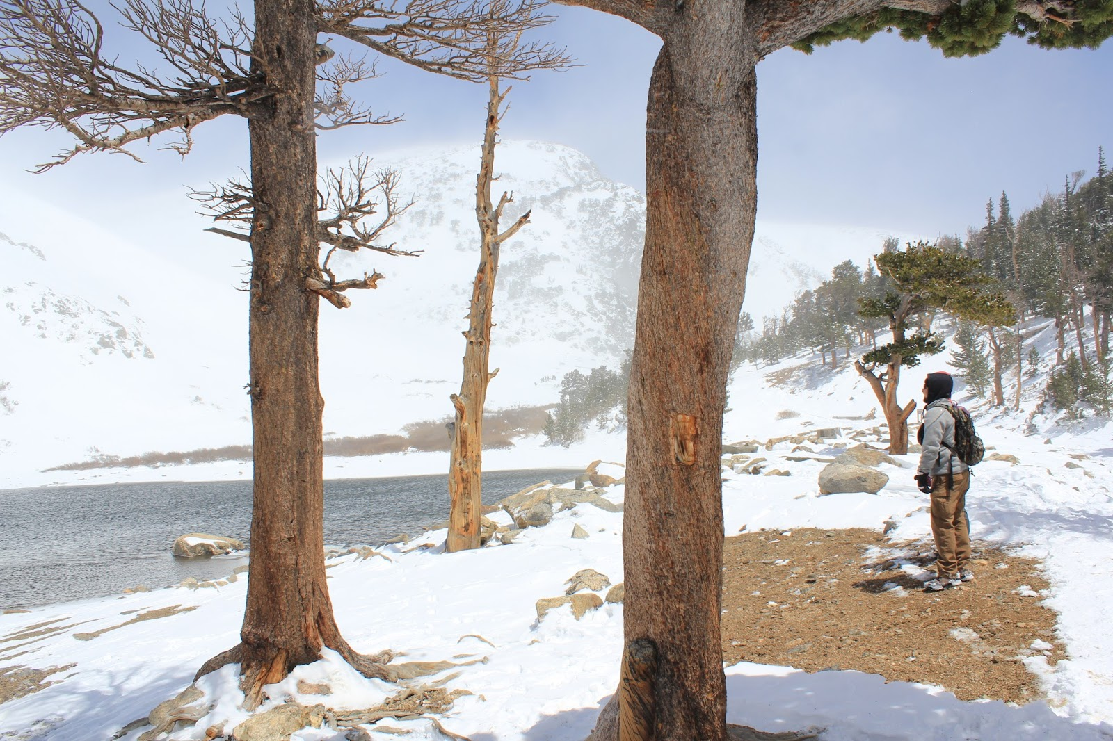 Search For Forrest Fenn's Buried Treasure In The Rocky Mountains