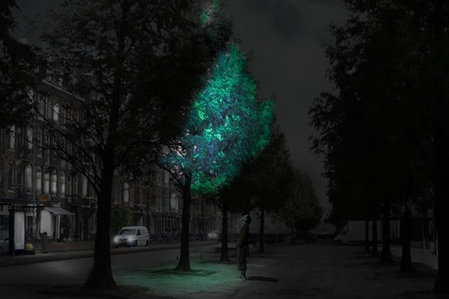 arboles-luminosos