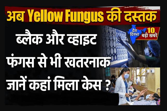 येलो फंगस संक्रमण (Yellow Fungus infection) क्या है