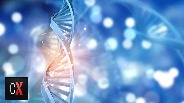 biblically scientific origin of mankind