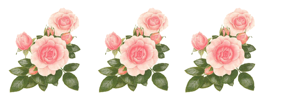 Bordes de rosas para imprimir
