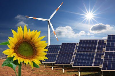 Google puts resources into the Center for Resource Solutions, a renewable energy non-profit