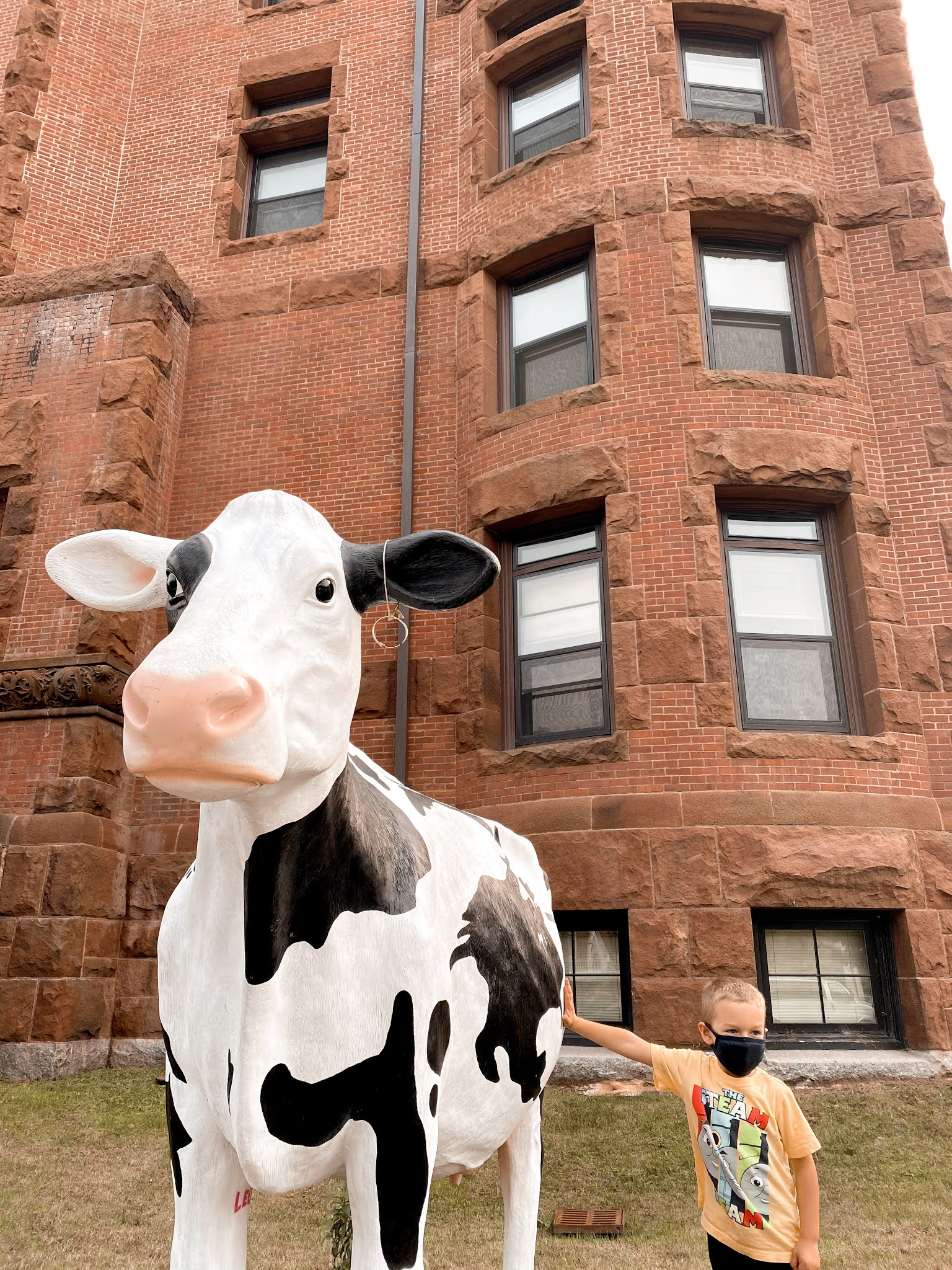 Department of Agriculture Cow in Vermont | biblio-style.com