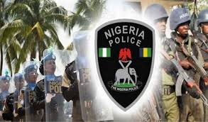 'Hawk eye' is Nigerian Police Crime Reporting App