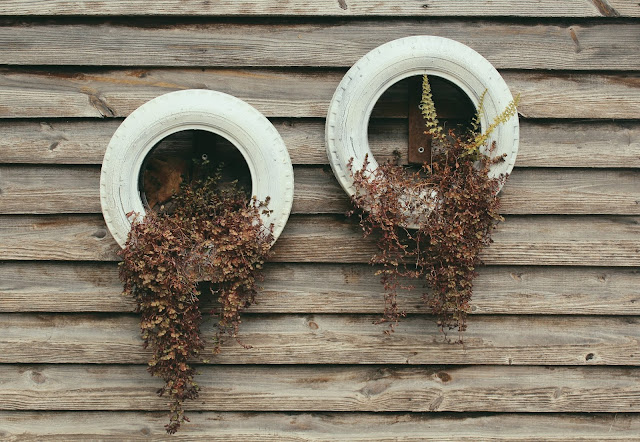 "Repurposed tyres as plant holders Photo by ""My Life Through A Lens"" on Unsplash"