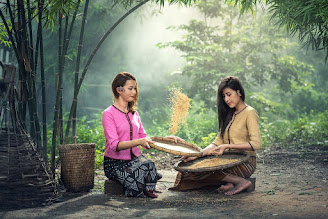 Reis Frauen Sitzen Ernte Sau Sieb Erwachsene