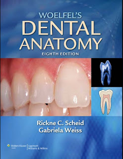 Woelfel's Dental Anatomy – Its Relevance to Dentistry 8th Edition