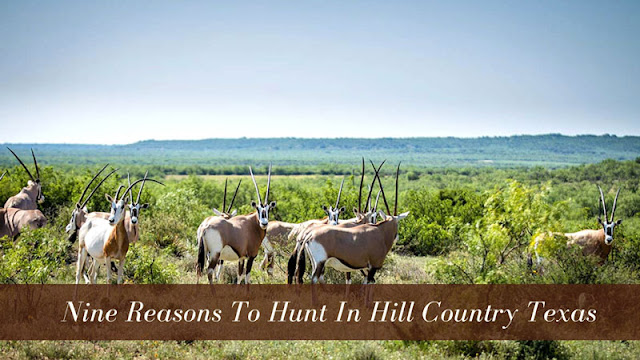Nine Reasons to Hunt in Hill Country Texas