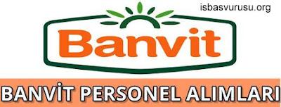 banvit-is-basvurusu