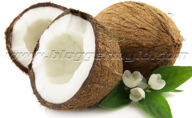 Buah kelapa atau buah yang memiliki nama latin cocos nucifera ini memiliki berbagai manfaat bagi kehidupan sehari-hari. Mulai dari akar, batang, buah dan daunnya pun dapat dimanfaatkan.    Akar, batang dan daunnya dapat digunakan sebagai bahan untuk membangun rumah atau sekedar hiasan. Sedangkan manfaat buah kelapa terkandung di dalam kandungan zat yang dimilikinya.    Berikut beberapa kandungan yang terdapat di dalam buah kelapa yang baik untuk kesehatan:    1. Kandungan zat pada daging buah kelapa Di dalam daging buah Kelapa terkandung sekitar 90% asam lemak jenuh dan 105 asam lemak tak jenuh. Meskipun buah kelapa mengandung asam lemak jenuh, akan tetapi minyak Kelapa yang dihasilkan memiliki rantai karbon sedang yang mempermudah dalam pencernaan.    Asam lemak rantai sedang jauh lebih baik jika dibandingkan dengan asam lemak rantai panjang yang membutuhkan proses pencernaan lebih lama.    Asam lemak rantai sedang bisa langsung dicerna di dalam usus tanpa adanya proses enzimatis dan hidrolisis.Sedangkan asam lemak rantai panjang harus melalui beberapa tahapan terlebih dahulu untuk dapat diproses di dalam sistem pencernaan manusia.    Kandungan manfaat buah kelapa di dalam asam lemak rantai sedang ini adalah berkemampuan secara spesifik sebagai anti-protozoa, anti-fungsi, anti-bakteri, dan juga anti-virus.    2. Kandungan zat pada air kelapa Berdasarkan hasil penelitian air kelapa mengandung sekitar 0,3% protein, 91% mineral dengan sisanya adalah protein, karbohidrat dan lemak. Sedangkan kandungan yang terdapat di dalam mineral air kelapa itu sendiri adalah terdiri atas natrium, kalium, kalsium, magnesium dan lainnya yang bermanfaat untuk kesehatan tubuh.    Dari berbagai kandungan zat gizi tersebutlah yang membuat air kelapa sangat kaya akan berbagai macam khasiat dan diburu oleh manusia.    Buah kelapa merupakan jenis tanaman yang banyak tumbuh di daerah pesisir pantai. Buah yang berwarna hijau pada kulitnya dan warna putih pada daging buahnya ini memiliki kandun