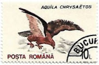 Selo Águia-real, Romênia