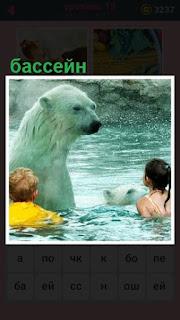 в бассейне с белым медведем купаются дети