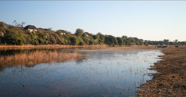 Boteti River in July 2020 - Botswana