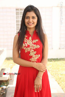 Telugu Actress Priyanka Jain Stills in Red Dress at Amazing Arts Production no 1 Movie Opening  0018.JPG