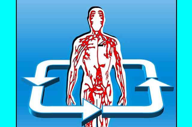 4 علامات تدل على ضعف الدورة الدموية