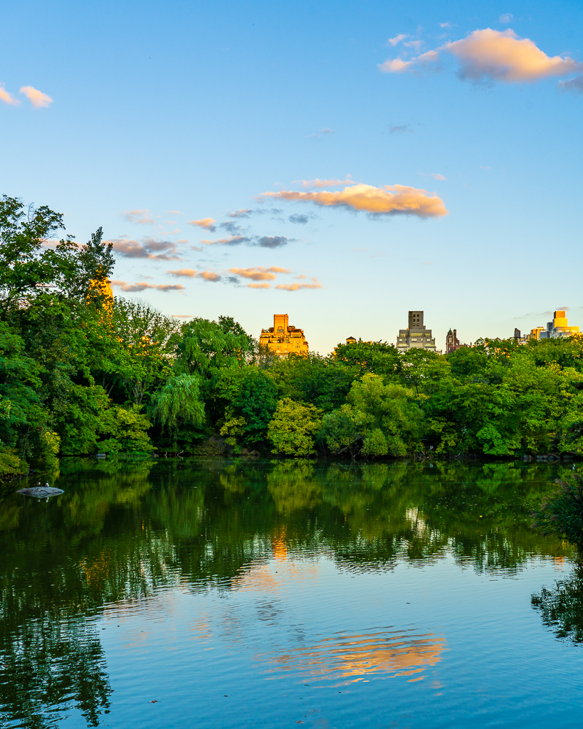 a photo of a sunset reflecting on the lake in central park new york city
