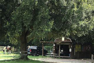 Florida rural