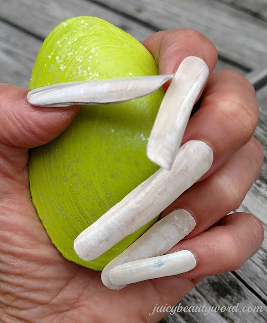 seashell nail designs