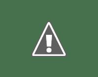 National animal of India - Bengal tiger